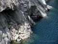 Lago della diga Val Verzasca