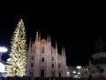 Piazza duomo Milano e albero di Natale