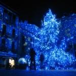 Albero di Natale in piazza Duomo a Como