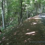 Strada verso l'osservatorio del Campo Dei Fiori