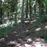 Scorciatoia per l'osservatorio del Campo Dei Fiori