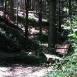 Panchina lungo la strada per il Forte di Orino