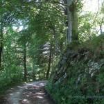Strada per il Forte di Orino
